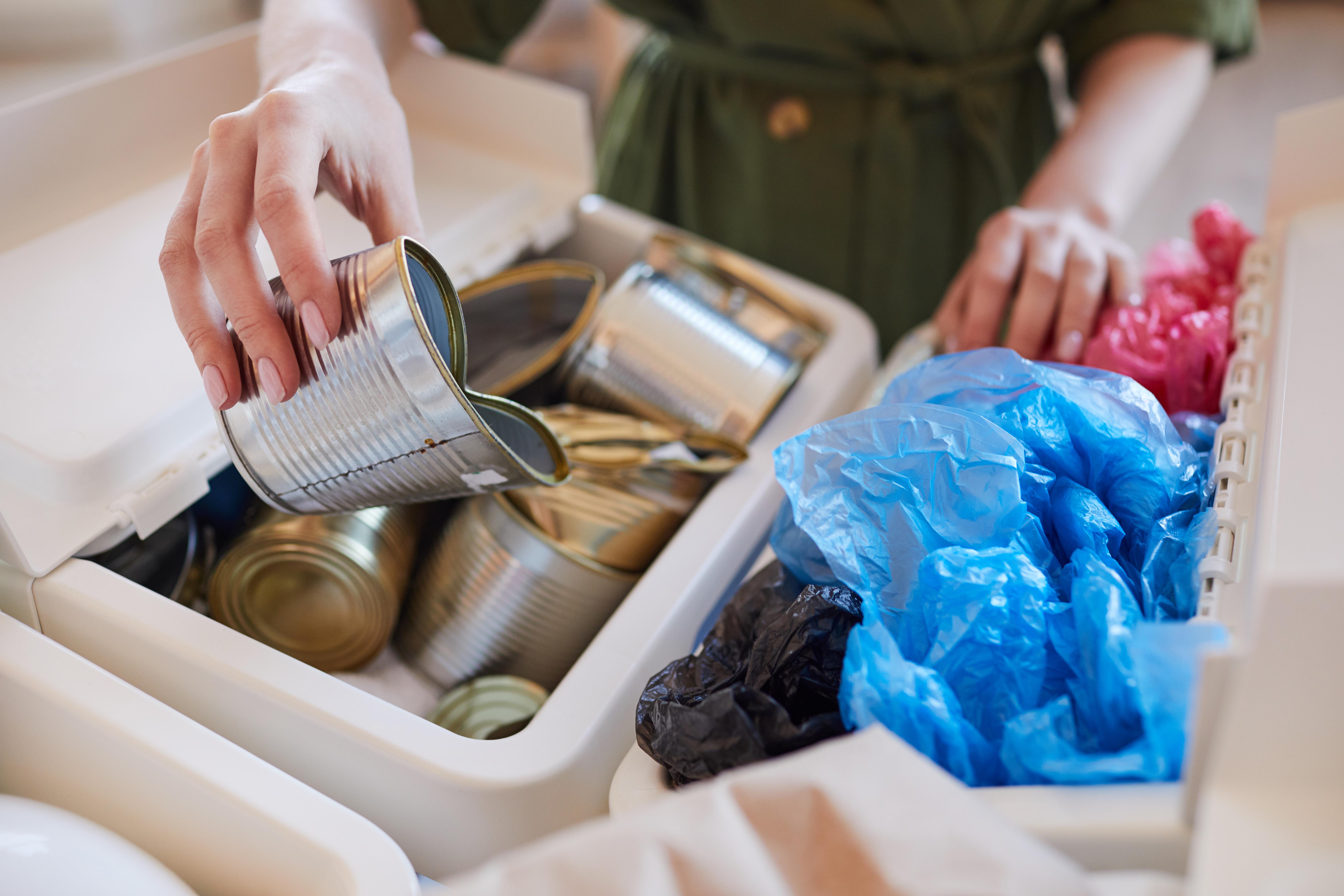 sustentabilidade na separação do lixo