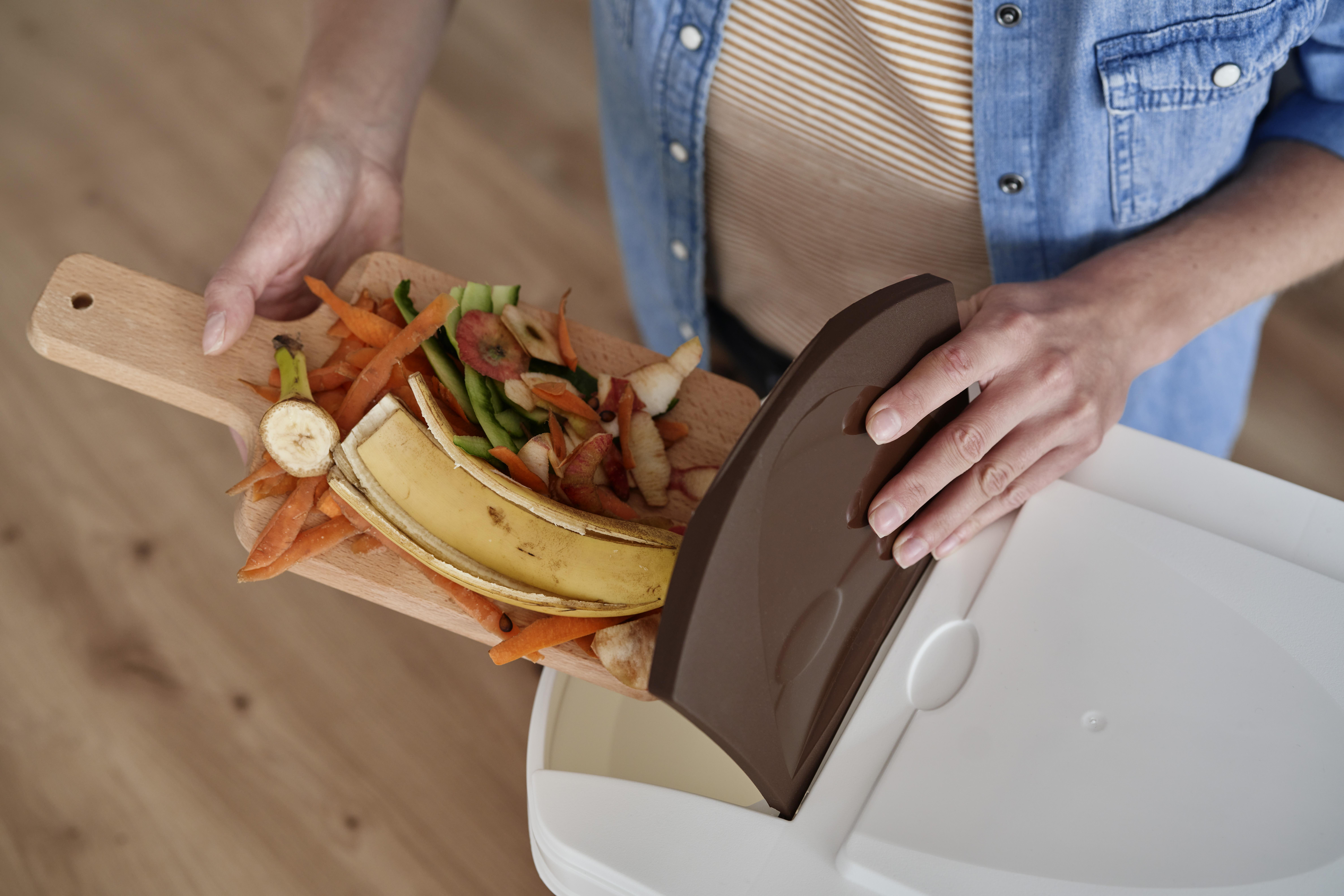 resíduos orgânicos jogados fora em compostagem doméstica